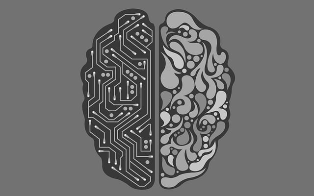 What is the difference between AI and Automation?